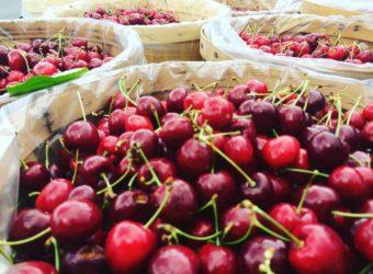 Cherries, Plums, & More