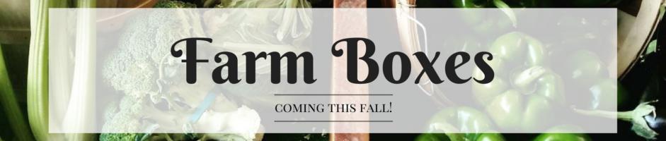 Farm Boxes